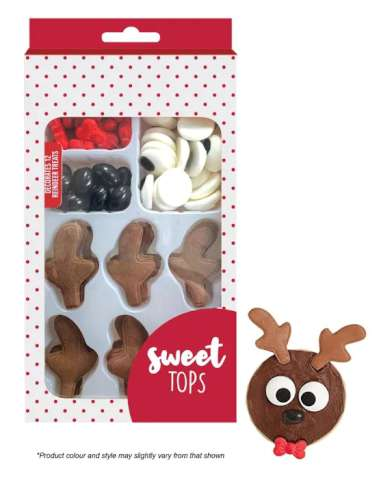 Reindeer Decorating Kit